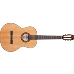 Fiesta FC w/ Case - Solid Cedar Top, Solid Rosewood Back & Sides